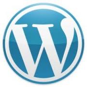 cms wordpress website niederöstereich