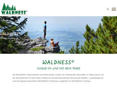 Webdesign für Tourismus Projekt