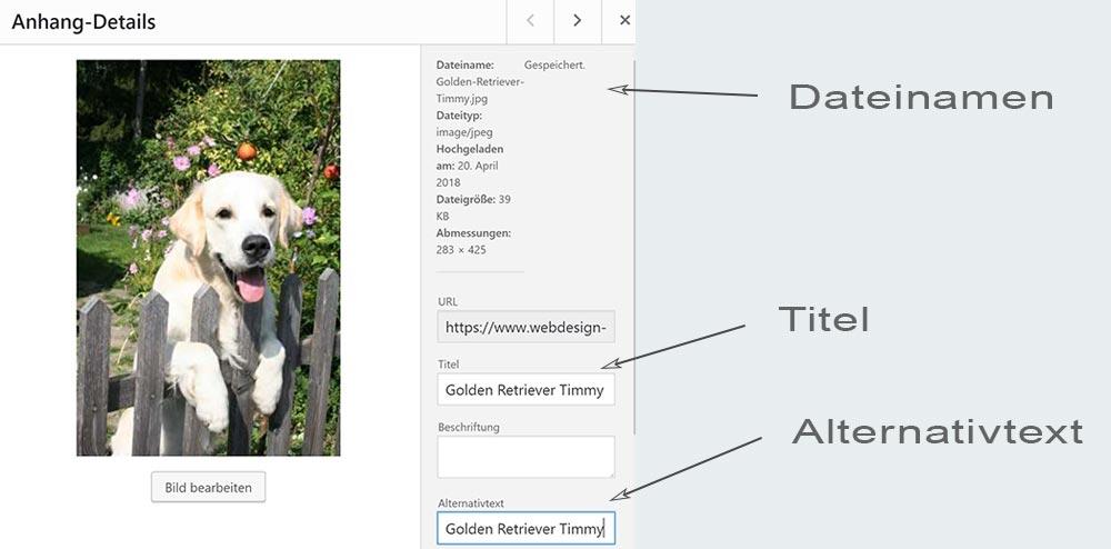Bilder richtig benennen in WordPress